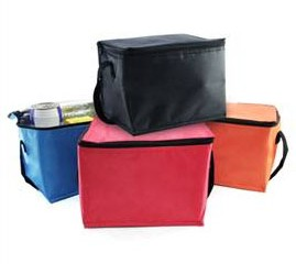 TMB2101 Trendy Insulated Cooler Bag